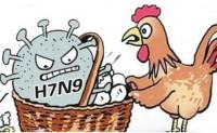 河北承德宽城人预防H7N9禽流感的防控方法